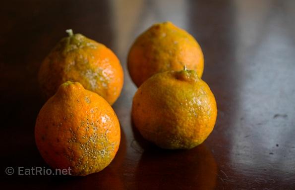 Limão cravo, rangpur lime, canton lemon, hime