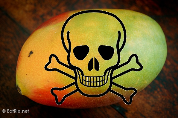 Mango and Milk is poisonous