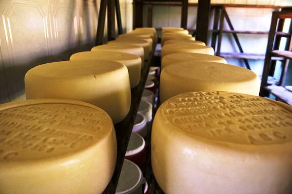 queijo-de-canastra